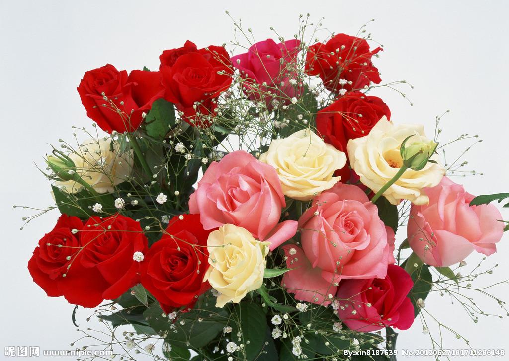 壁纸 花 花束 鲜花 桌面 1024_727图片